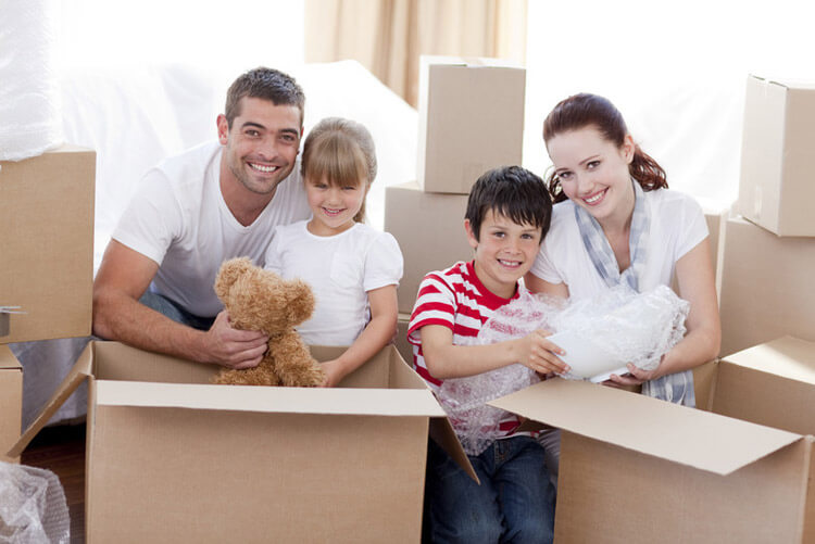 UK domestic removals